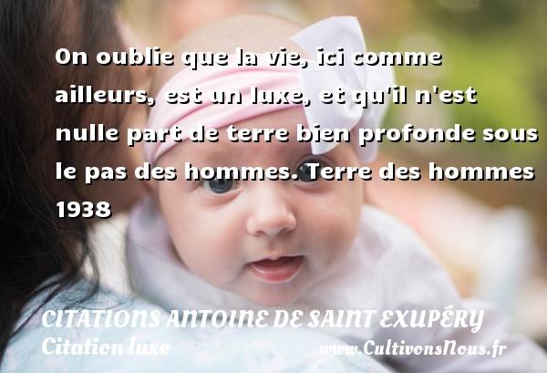 On oublie que la vie, ici comme ailleurs, est un luxe, et qu il n est nulle part de terre bien profonde sous le pas des hommes.  Terre des hommes 1938     Une citation d Antoine de Saint-Exupéry CITATIONS ANTOINE DE SAINT EXUPÉRY - Citations Antoine de Saint Exupéry - Citation luxe