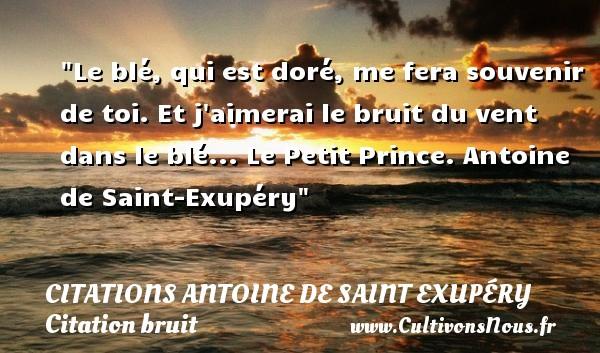 Le blé, qui est doré, me fera souvenir de toi. Et j aimerai le bruit du vent dans le blé...  Le Petit Prince. Antoine de Saint-Exupéry   Une citation sur le bruit CITATIONS ANTOINE DE SAINT EXUPÉRY - Citations Antoine de Saint Exupéry - Citation bruit