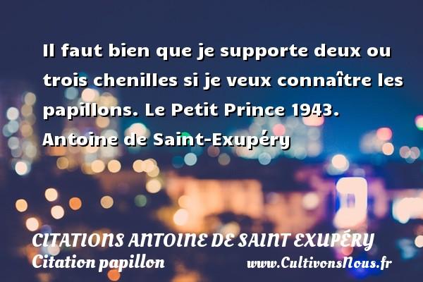 Il faut bien que je supporte deux ou trois chenilles si je veux connaître les papillons.  Le Petit Prince 1943. Antoine de Saint-Exupéry CITATIONS ANTOINE DE SAINT EXUPÉRY - Citations Antoine de Saint Exupéry - Citation papillon