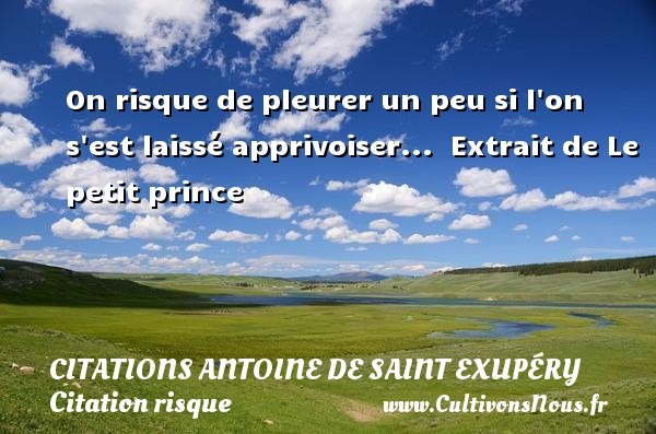 On risque de pleurer un peu si l on s est laissé apprivoiser...   Extrait de Le petit prince  Une citation d Antoine de Saint-Exupéry CITATIONS ANTOINE DE SAINT EXUPÉRY - Citations Antoine de Saint Exupéry - Citation risque