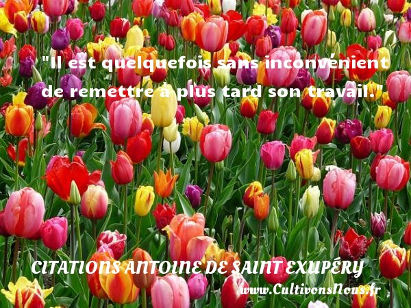 Il est quelquefois sans inconvénient de remettre à plus tard son travail.  Une citation d  Antoine de Saint-Exupéry CITATIONS ANTOINE DE SAINT EXUPÉRY - Citations Antoine de Saint Exupéry - Citation inconvénient - Citation travail