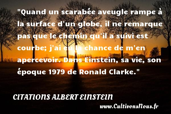 Quand un scarabée aveugle rampe à la surface d un globe, il ne remarque pas que le chemin qu il a suivi est courbe; j ai eu la chance de m en apercevoir.  Dans Einstein, sa vie, son époque 1979 de Ronald Clarke. Une citation d  Albert Einstein CITATIONS ALBERT EINSTEIN