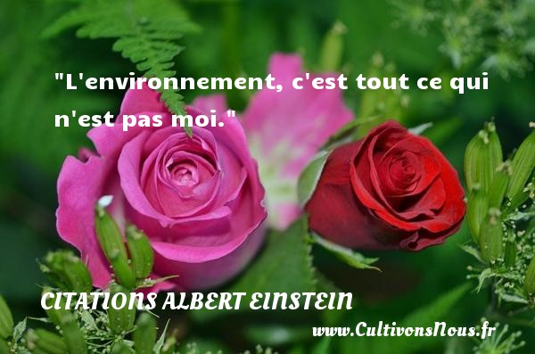 L environnement, c est tout ce qui n est pas moi. CITATIONS ALBERT EINSTEIN