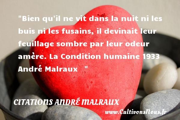 Bien qu il ne vit dans la nuit ni les buis ni les fusains, il devinait leur feuillage sombre par leur odeur amère.  La Condition humaine 1933 André Malraux    CITATIONS ANDRÉ MALRAUX - Citations André Malraux - Citation odeur
