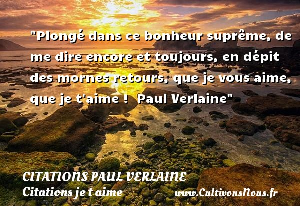 Plongé dans ce bonheur suprême, de me dire encore et toujours, en dépit des mornes retours, que je vous aime, que je t aime !   Paul Verlaine   Une citation je t aime CITATIONS PAUL VERLAINE - Citations je t aime