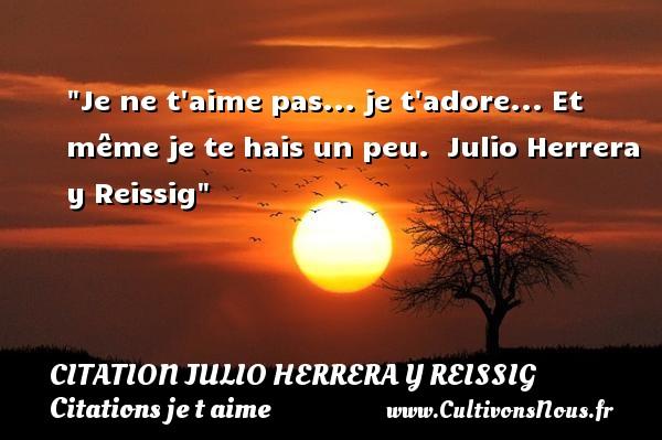 Je ne t aime pas... je t adore... Et même je te hais un peu.   Julio Herrera y Reissig   Une citation je t aime CITATION JULIO HERRERA Y REISSIG - Citations je t aime