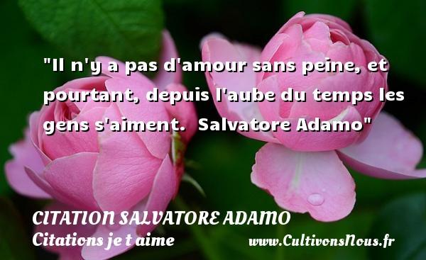 Il n y a pas d amour sans peine, et pourtant, depuis l aube du temps les gens s aiment.   Salvatore Adamo   Une citation je t aime CITATION SALVATORE ADAMO - Citations je t aime