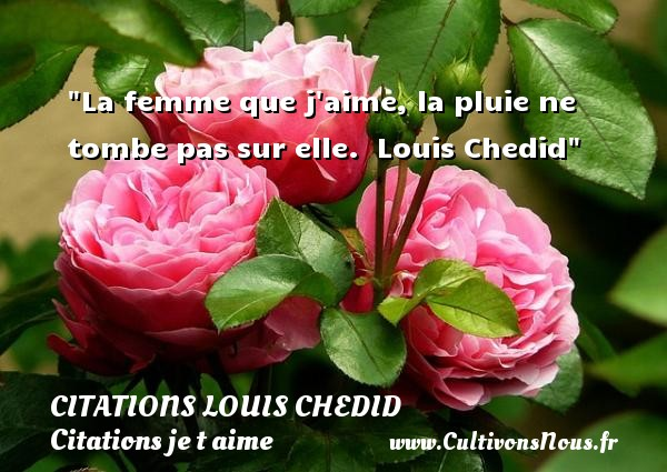 La femme que j aime, la pluie ne tombe pas sur elle.   Louis Chedid   Une citation je t aime CITATIONS LOUIS CHEDID - Citations Louis Chedid - Citations je t aime