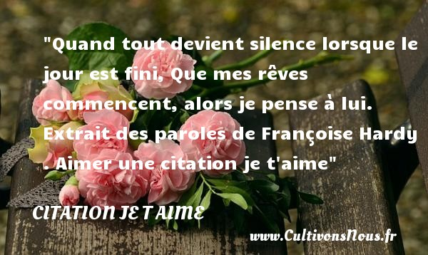 Citation Françoise Hardy - Citations je t aime - Quand tout devient silence lorsque le jour est fini, Que mes rêves commencent, alors je pense à lui.   Extrait des paroles de Françoise Hardy   Une citation je t aime CITATION FRANÇOISE HARDY