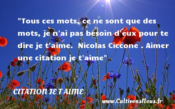 Tous ces mots, ce ne sont que des mots, je n ai pas besoin d eux pour te dire je t aime.   Nicolas Ciccone   Une citation je t aime CITATION NICOLAS CICCONE - Citations je t aime