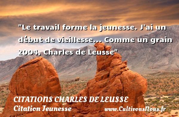 Le travail forme la jeunesse. J ai un début de vieillesse...  Comme un grain 2004, Charles de Leusse   Une citation sur la jeunesse CITATIONS CHARLES DE LEUSSE - Citation Jeunesse - Citation travail