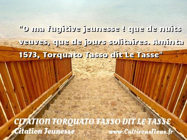 O ma fugitive jeunesse ! que de nuits veuves, que de jours solitaires.  Aminta 1573, Torquato Tasso dit Le Tasse   Une citation sur la jeunesse CITATION TORQUATO TASSO DIT LE TASSE - Citation Jeunesse