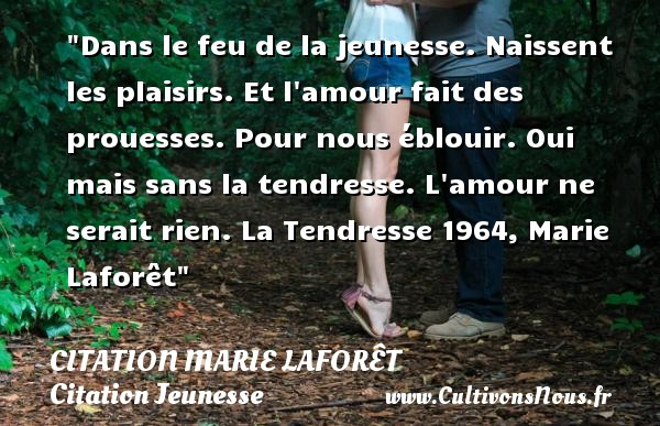 Dans le feu de la jeunesse. Naissent les plaisirs. Et l amour fait des prouesses. Pour nous éblouir. Oui mais sans la tendresse. L amour ne serait rien.  La Tendresse 1964, Marie Laforêt   Une citation sur la jeunesse CITATION MARIE LAFORÊT - Citation Marie Laforêt - Citation Jeunesse