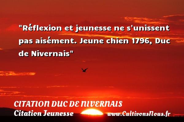 Réflexion et jeunesse ne s unissent pas aisément.  Jeune chien 1796, Duc de Nivernais   Une citation sur la jeunesse CITATION DUC DE NIVERNAIS - Citation Jeunesse