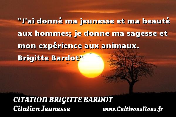 J ai donné ma jeunesse et ma beauté aux hommes; je donne ma sagesse et mon expérience aux animaux.   Brigitte Bardot   Une citation sur la jeunesse CITATION BRIGITTE BARDOT - Citation animaux - Citation Jeunesse
