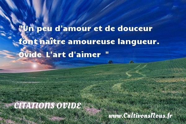 Un Peu D Amour Et De Douceur Font Citations Ovide