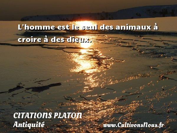 L homme est le seul des animaux à croire à des dieux.  Une citation de Platon CITATIONS PLATON - Antiquité - Citation philosophie - philosophe