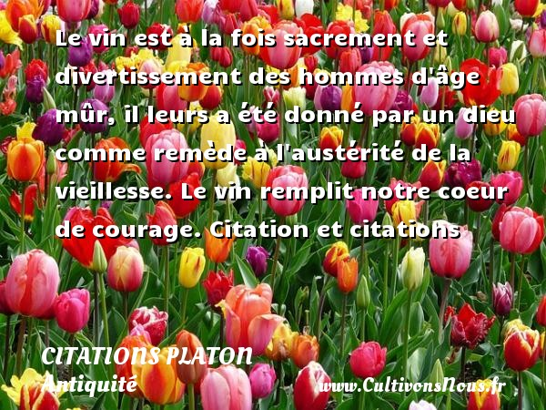 Citations - Citations Platon - Antiquité - Citation philosophie - philosophe - Le vin est à la fois sacrement et divertissement des hommes d âge mûr, il leurs a été donné par un dieu  comme remède à l austérité de la vieillesse. Le vin remplit notre coeur de courage.  Citation et citations  Une citation de Platon CITATIONS PLATON