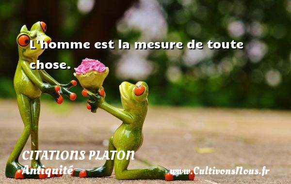 L homme est la mesure de toute chose.  Une citation de Platon CITATIONS PLATON - Antiquité - Citation philosophie - philosophe