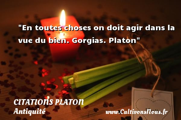 Citations - Citations Platon - Antiquité - Citation agir - Citation philosophie - philosophe - En toutes choses on doit agir dans la vue du bien.  Gorgias. Platon   Une citation agir CITATIONS PLATON