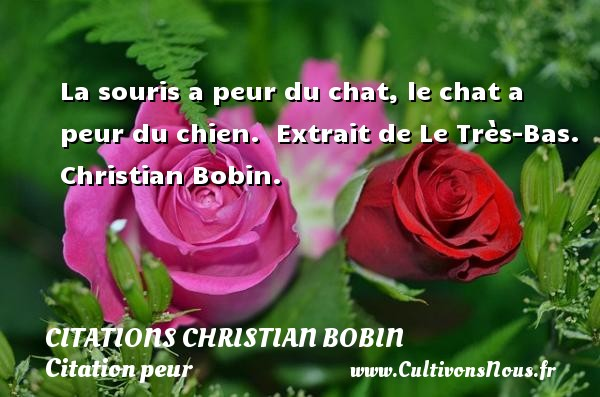 Citations Christian Bobin - Citation peur - La souris a peur du chat, le chat a peur du chien.   Extrait de Le Très-Bas. Christian Bobin. Une citation sur la peur CITATIONS CHRISTIAN BOBIN