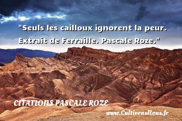 Seuls les cailloux ignorent la peur.   Extrait de Ferraille. Pascale Roze. Une citation sur la peur CITATIONS PASCALE ROZE - Citation peur