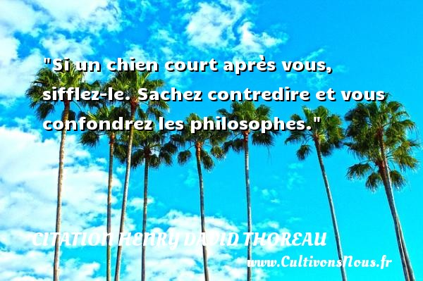 Si un chien court après vous, sifflez-le. Sachez contredire et vous confondrez les philosophes.  Une citation extraite de  Journal , Henry David Thoreau   Une citation sur la philosophie CITATION HENRY DAVID THOREAU - Citation philosophie