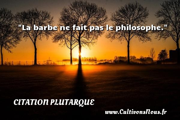 Citation Plutarque - Citation barbe - Citation philosophie - La barbe ne fait pas le philosophe.  Une citation extraite de  Oeuvres morales , Plutarque   Une citation sur la philosophie CITATION PLUTARQUE