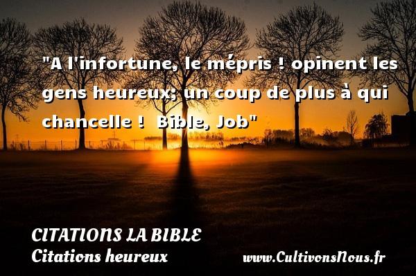 A l infortune, le mépris ! opinent les gens heureux; un coup de plus à qui chancelle !   Bible, Job   Une citation sur le mot heureux CITATIONS LA BIBLE - Citations heureux