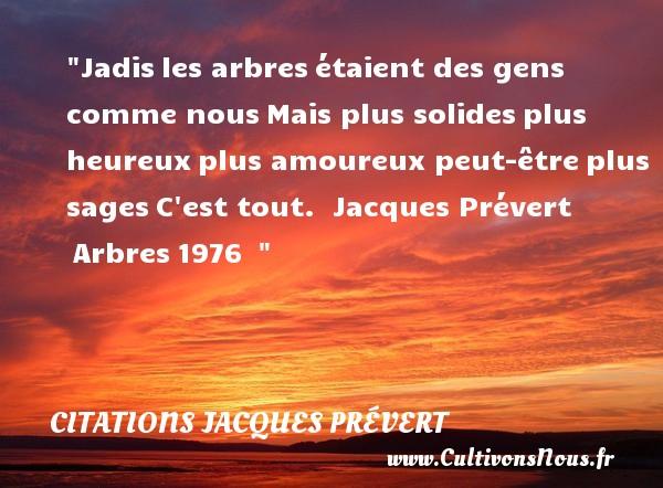 Citations Jacques Prévert - Citation arbre - Citations heureux - Jadisles arbresétaient des gens comme nousMais plus solidesplus heureuxplus amoureux peut-êtreplus sagesC est tout.   Jacques Prévert Arbres1976     Une citation sur le mot heureux CITATIONS JACQUES PRÉVERT