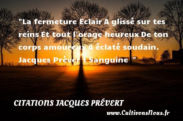 Citations Jacques Prévert - Citations heureux - La fermeture EclairA glissé sur tes reinsEt tout l orage heureuxDe ton corps amoureuxA éclaté soudain.   Jacques Préver tSanguine     Une citation sur le mot heureux CITATIONS JACQUES PRÉVERT
