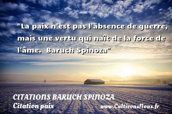 Citaten Spinoza : Citation baruch spinoza les citations de