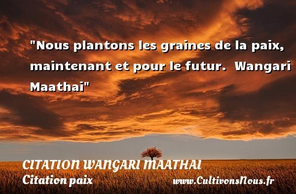 Nous plantons les graines de la paix, maintenant et pour le futur.   Wangari Maathai   Une citation sur la Paix CITATION WANGARI MAATHAI - Citation paix