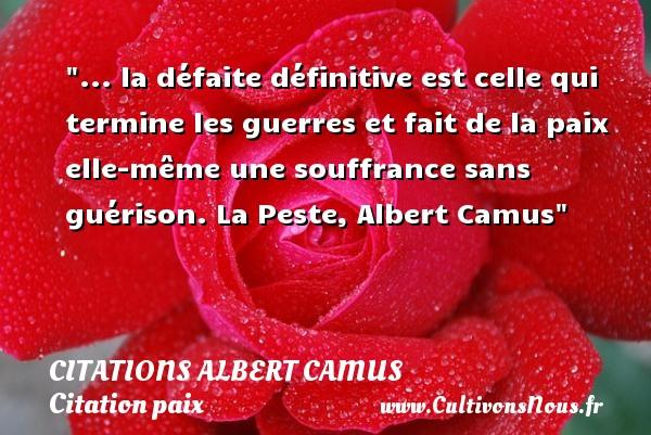 Citations Albert Camus - Citation défaite - Citation paix - ... la défaite définitive est celle qui termine les guerres et fait de la paix elle-même une souffrance sans guérison.  La Peste, Albert Camus   Une citation sur la Paix CITATIONS ALBERT CAMUS