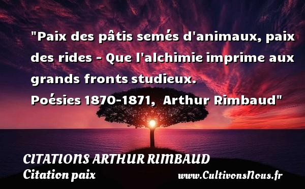 Citations Arthur Rimbaud - Citation animaux - Citation paix - Paix des pâtis semés d animaux, paix des rides - Que l alchimie imprime aux grands fronts studieux.  Poésies 1870-1871,  Arthur Rimbaud   Une citation sur la Paix CITATIONS ARTHUR RIMBAUD