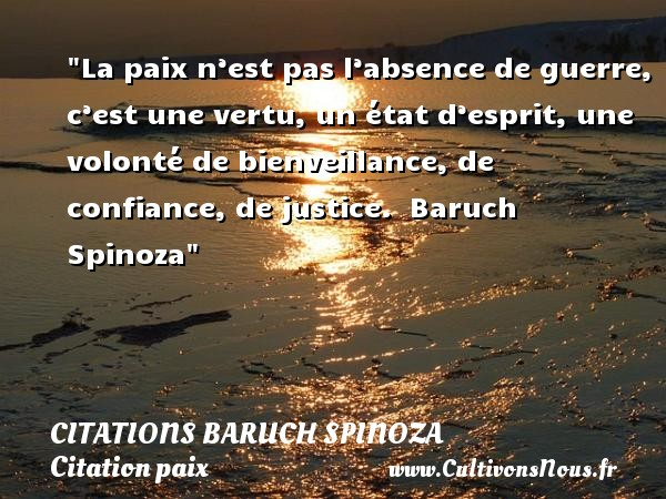 Citaten Spinoza Citaten : Citation baruch spinoza les citations de