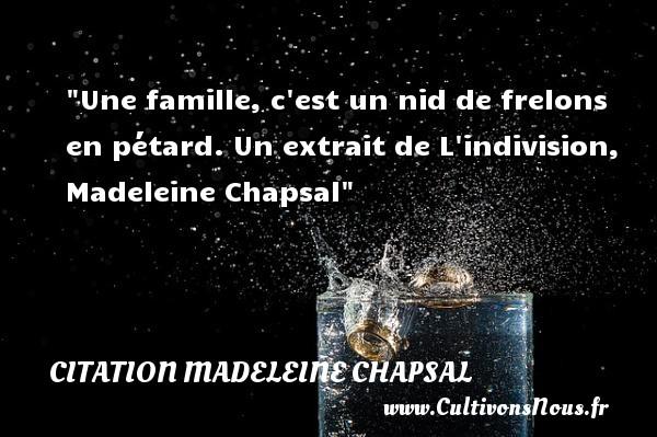 Une famille, c est un nid de frelons en pétard.  Un extrait de L indivision, Madeleine Chapsal   Une citation famille CITATION MADELEINE CHAPSAL