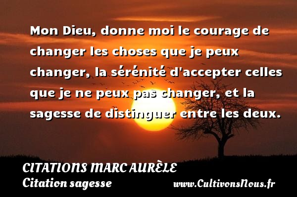 Mon Dieu, donne moi le courage de changer les choses que je peux changer, la sérénité d accepter celles que je ne peux pas changer, et la sagesse de distinguer entre les deux.    Une citation de Marc Aurèle CITATIONS MARC AURÈLE - Citations Marc Aurèle - Citation sagesse