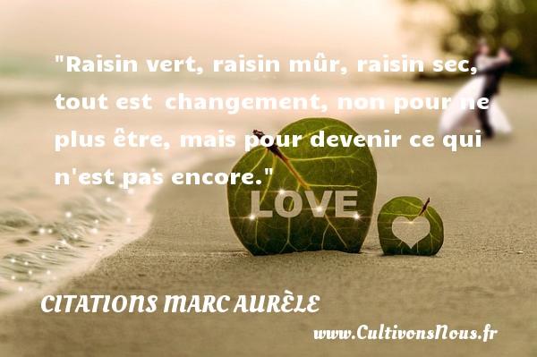 Citations Marc Aurèle - Citation changement - Raisin vert, raisin mûr, raisin sec, tout est changement, non pour ne plus être, mais pour devenir ce qui n est pas encore.  Une citation de Marc Aurèle CITATIONS MARC AURÈLE
