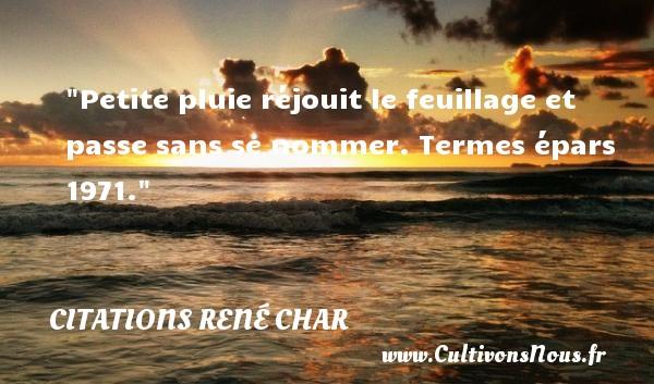 Citations René Char - Citation pluie - Petite pluie réjouit le feuillage et passe sans se nommer.  Termes épars 1971. Une citation de René Char CITATIONS RENÉ CHAR
