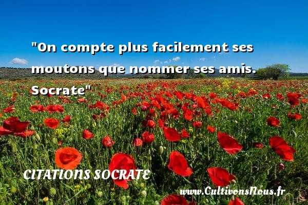 Citations Socrate - Citation ami - On compte plus facilement ses moutons que nommer ses amis.   Socrate   Une citation sur l ami CITATIONS SOCRATE