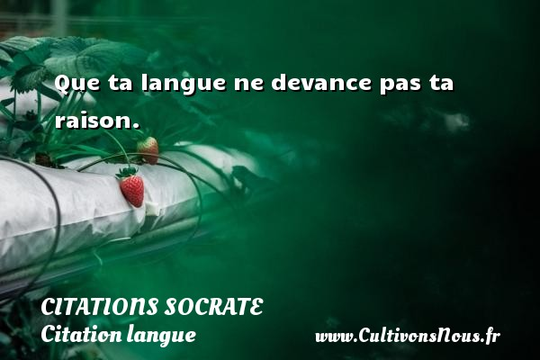 Que ta langue ne devance pas ta raison.   Une citation sur Socrate CITATIONS SOCRATE - Citation langue
