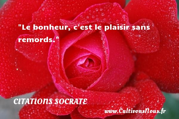 Citations Socrate - Citations bonheur - Le bonheur, c est le plaisir sans remords.  Une citation de Socrate . Le monde grec 5eme siècle avant Jésus christ    CITATIONS SOCRATE