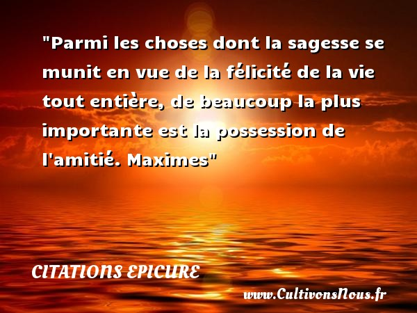 Parmi les choses dont la sagesse se munit en vue de la félicité de la vie tout entière, de beaucoup la plus importante est la possession de l amitié.  Maximes. Epicure   Une citation sur félicité CITATIONS EPICURE - Citation age - Citation félicité