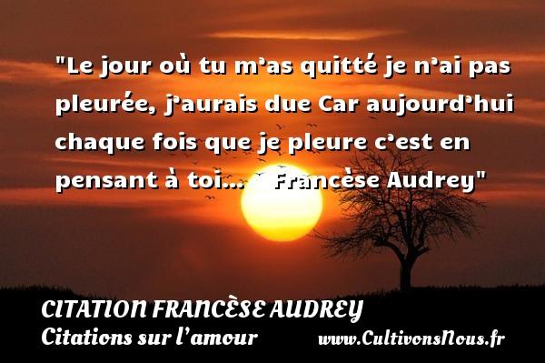 Le jour où tu m'as quitté je n'ai pas pleurée, j'aurais due  Car aujourd'hui chaque fois que je pleure c'est en pensant à toi…     Francèse Audrey   Une citation sur l amour CITATION FRANCÈSE AUDREY - Citation Francèse Audrey - Citations sur l'amour