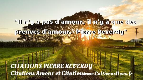 Il N Y A Pas D Amour Citations Pierre Reverdy Cultivons Nous