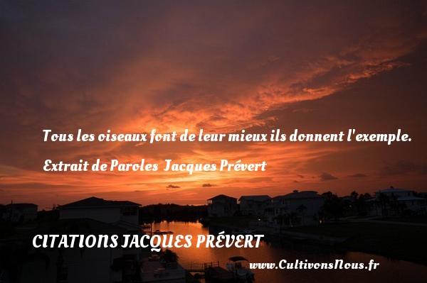 Tous les oiseauxfont de leur mieuxils donnent l exemple.  Extrait de Paroles   Jacques Prévert CITATIONS JACQUES PRÉVERT - Citations Jacques Prévert - Citation oiseau