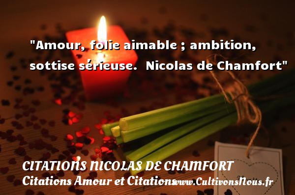 Amour, folie aimable ; ambition, sottise sérieuse.   Nicolas de Chamfort CITATIONS NICOLAS DE CHAMFORT - Citations Amour et Citations