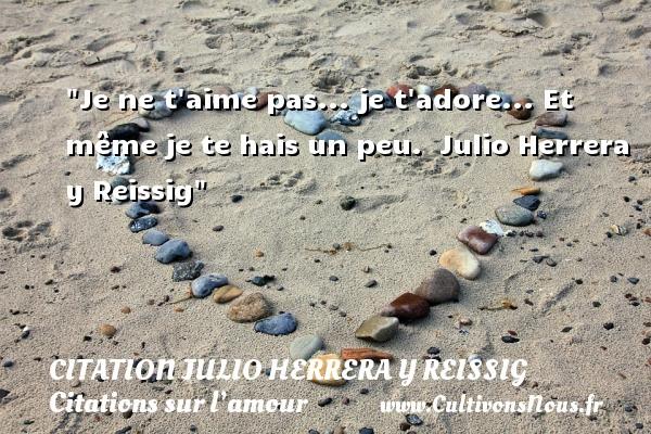 Je ne t aime pas... je t adore... Et même je te hais un peu.    Julio Herrera y Reissig   Une citation sur l amour CITATION JULIO HERRERA Y REISSIG - Citations sur l'amour