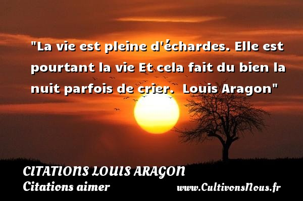 La vie est pleine d échardes. Elle est pourtant la vie Et cela fait du bien la nuit parfois de crier.   Louis Aragon   Une citation sur aimer CITATIONS LOUIS ARAGON - Citations aimer
